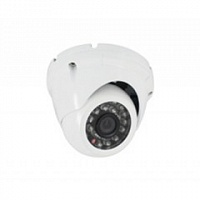 Видеокамера CoVi Security FI-252N-20